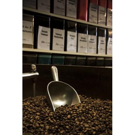 café n°303- maragogype du nicaragua