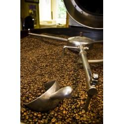 café n°309 - huehuetenango du guatemala