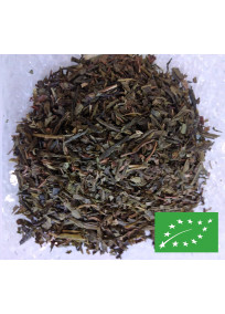Thé vert fluide glacial Bio aromatisé à la menthe et à la menthe poivrée avec feuilles de menthe.